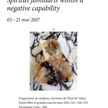 « Spiritus familiaris within a negative capability » de Marc Héron